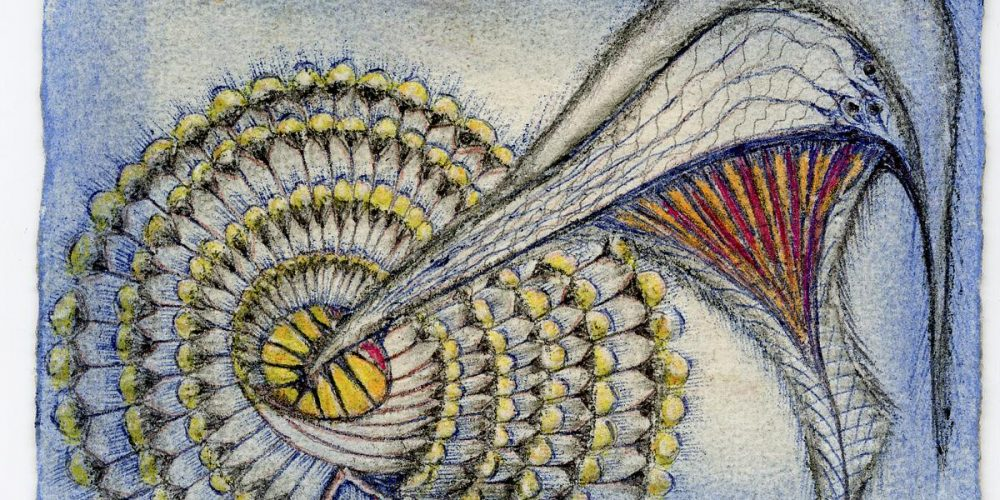 Paralelní světy Anny Zemánkové